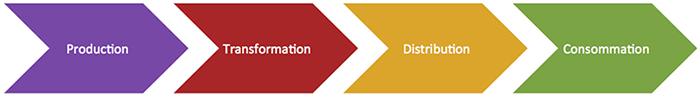 Étapes de la vie d'un produit alimentaire : production, transformation, distribution et consommation